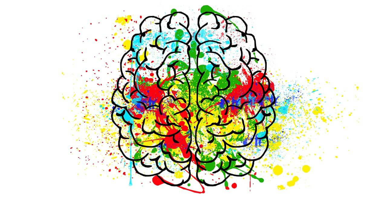 neuroplaszticitás